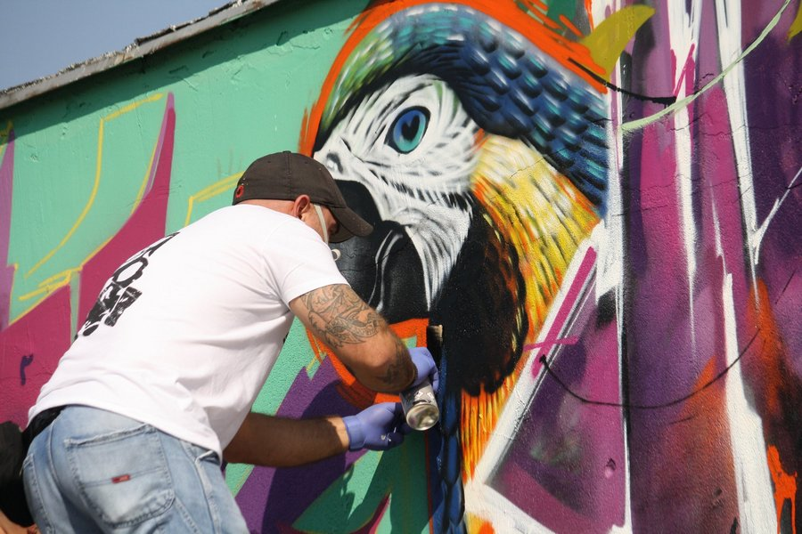 Grafitima s motivima džungle oslikali zidove na srednjoškolskom igralištu