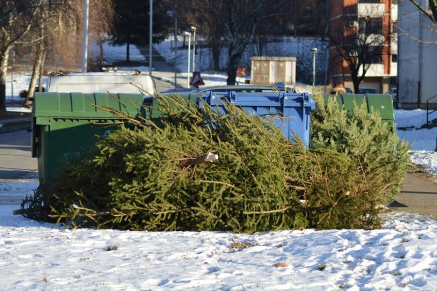 Univerzal odvozi islužena božićna drvca u gradu i prigradskim naseljima