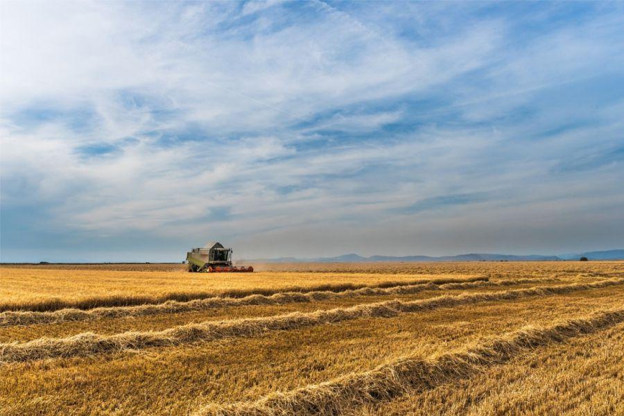 Javni pozivi o potporama u poljoprivredi i ruralnom razvoju na području Osječko – baranjske županije u 2019. godini