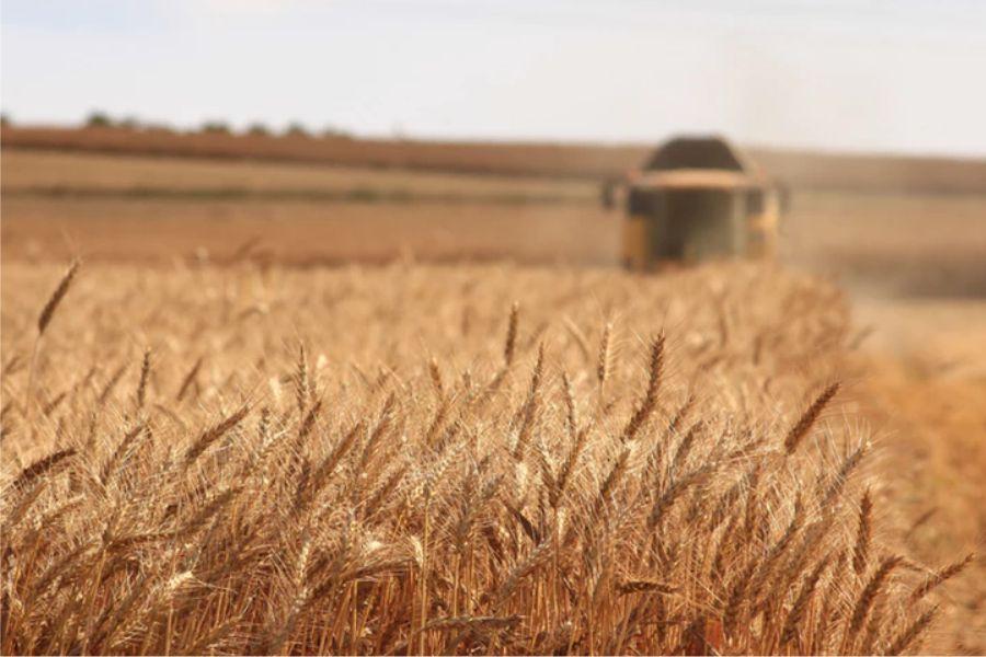 Na javnom savjetovanju – potpore u poljoprivredi i gospodarstvu