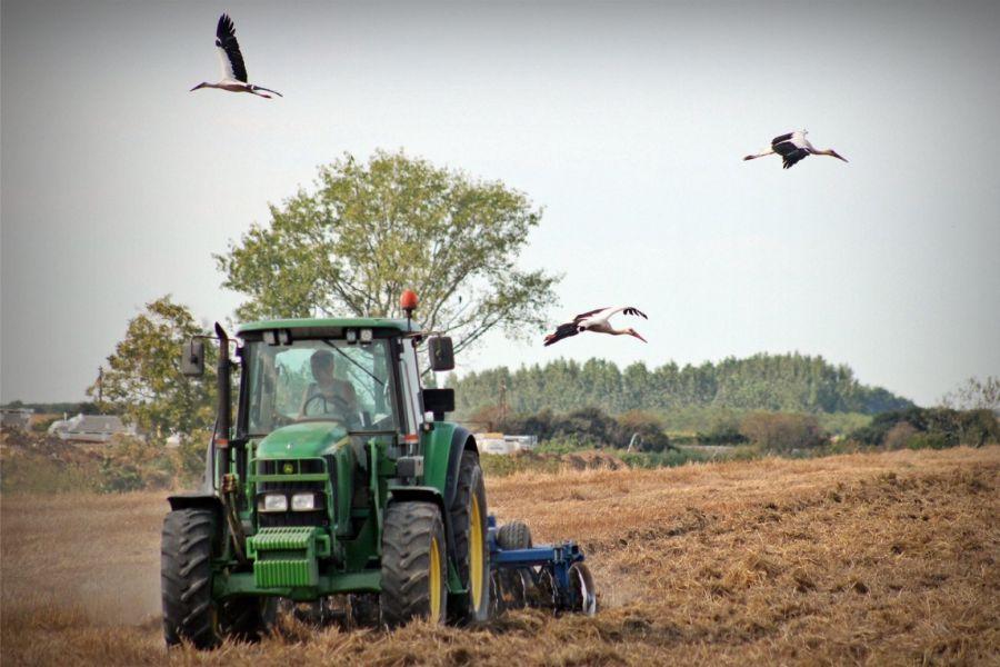 Javni poziv za dodjelu potpora u poljoprivredi i dalje je otvoren