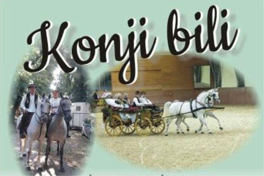 """Tradicijska smotra svatovskih zaprega na hipodromu """"Ravnica"""" u Širokom Polju"""