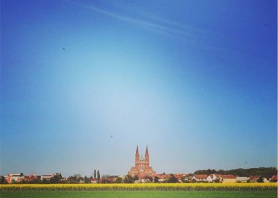 katedrala_đakovo_2019_foto_matej_serfezi_1 (3)