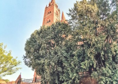 katedrala_đakovo_2019_foto_matej_serfezi_1 (9)