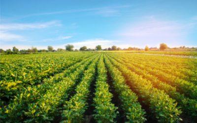 Izdavanje propusnica vlasnicima OPG-ova i poljoprivrednih zemljišta