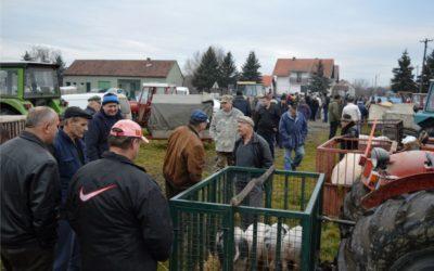 Univerzalov stočni sajam u Piškorevcima do daljnjega se neće održavati!