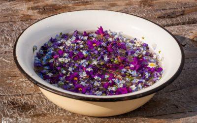 Cvjetnica je dan koji počinje umivanjem u cvijeću
