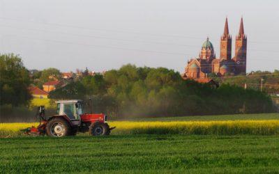 Đakovo od početka lipnja ima poljoprivrednog redara