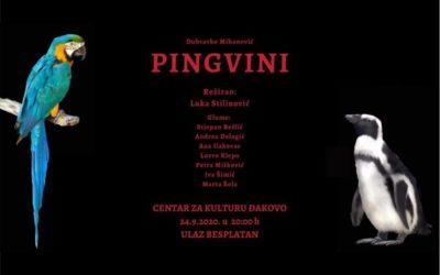 Predstava: Pingvini, Dramski studio