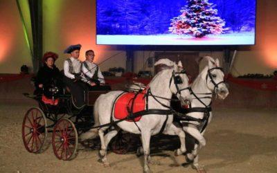 Otkazana ovogodišnja manifestacija Božićni bal lipicanaca