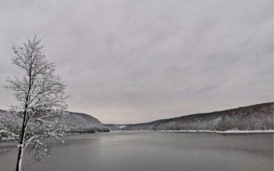 Jezero Borovik – Raj za ljubitelje prirode u srcu Slavonije