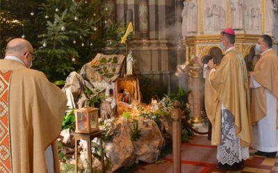Mons. Ivan Ćurić predvodio misno slavlje na Bogojavljenje