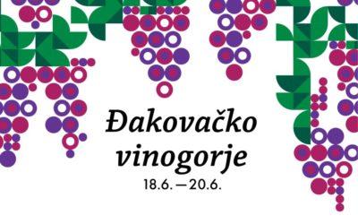 NO Jazz Band i Hojsak & Novosel na Danima otvorenih vinskih podruma Đakovačkog vinogorja