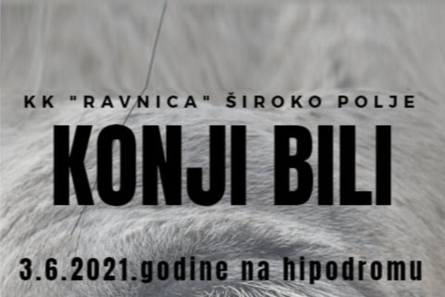 Konji bili_Foto_KK Ravnica