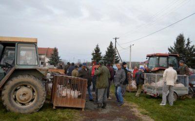 Nastavlja se održavanje stočnih sajmova u Piškorevcima